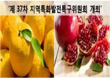 지역특구 3개 신규지정, 10개 우수특구 선정