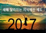 2017년 새롭게 달라지는 지식재산 제도